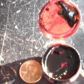 Phoenix Tears aka Rick Simpson Oil aka Hash Oil
