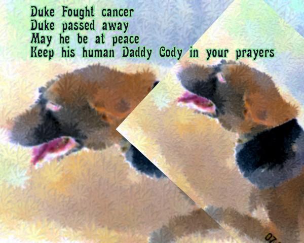 RIP Duke