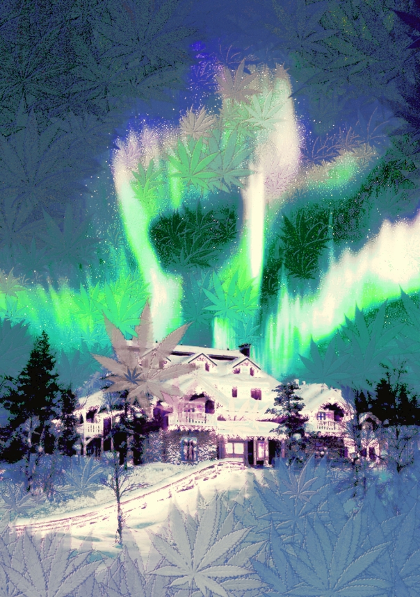 aurora borealis through cannabis eyes