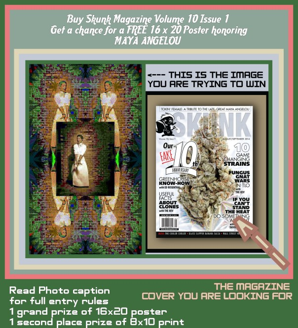 How to win 1. Share this image to your wall 2. Buy a copy of skunk volume 10 issue 1 3. Take a selfie holding the magazine 4. Pm it to breezy kiefair or please bogart my art, alternatively you may email the selfie to btokeefer@gmail.con First person to show me proof of pages gets a 16x20 poster of the image honoring Maya Angelou. Second place is an 8x10 print of the same image. Invite your friends and keep your eyes peeled for skunk especially in barnes and nobles and 7/11s Full rules for winning located at event page  on facebook: https://www.facebook.com/events/270664136471710/